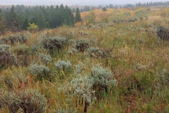 null bed null bath Vacant Land at  Tbd Pony Creek Rd Tetonia, ID, 83452 is for sale at 1.20m - google static map